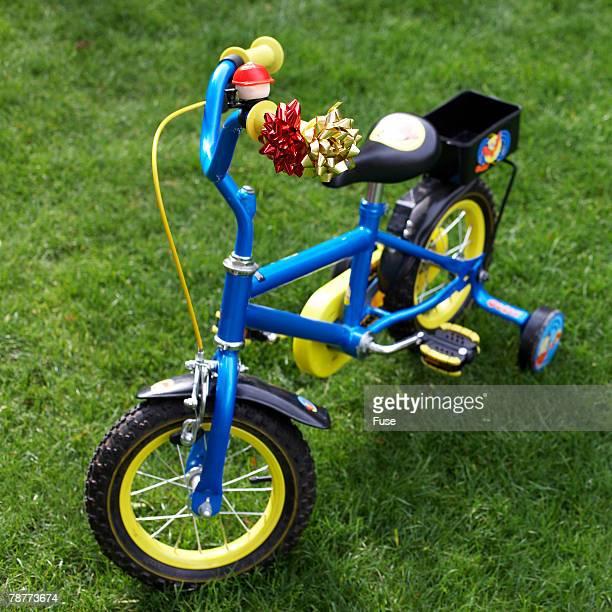 Childrens Bike with Training Wheels