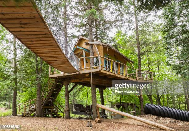 childrens playground and tree house, in residential garden, quebec, canada - tree house stock pictures, royalty-free photos & images