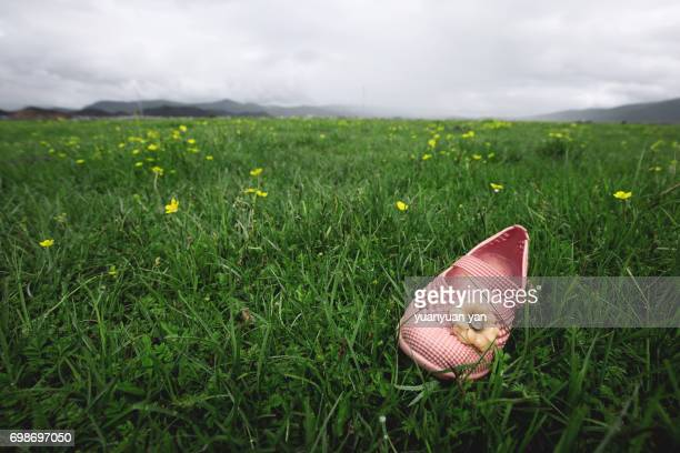 children's shoes fell on the grass