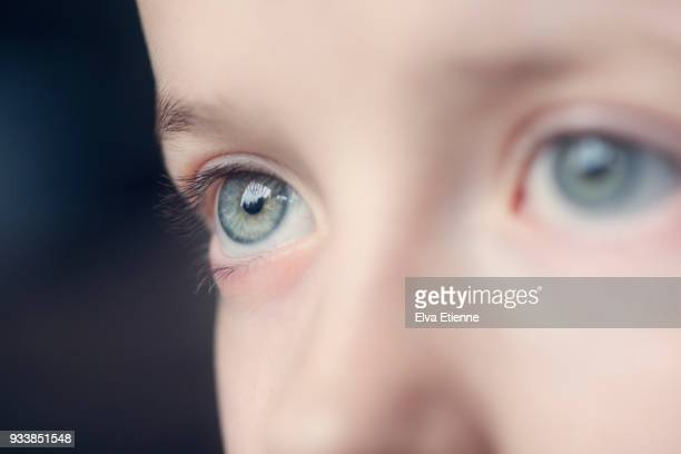 a child's blue eyes, with focus on the distant eye - one girl only stock pictures, royalty-free photos & images