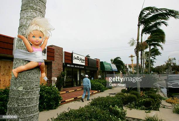 A childs doll remains tied to a palm tree on 5th Ave as Hurricane Wilma passes through October 24 2005 in Naples Florida Wilma slammed into the South...