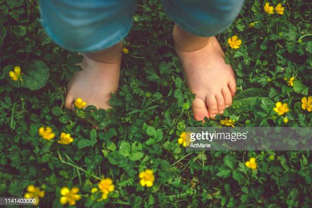 child's feet on the green grass - uncultivated stock pictures, royalty-free photos & images