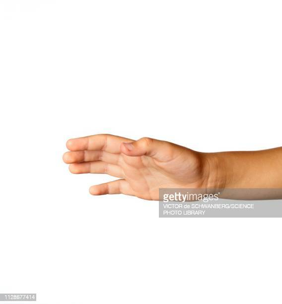 child's hand against white background - reaching stock pictures, royalty-free photos & images