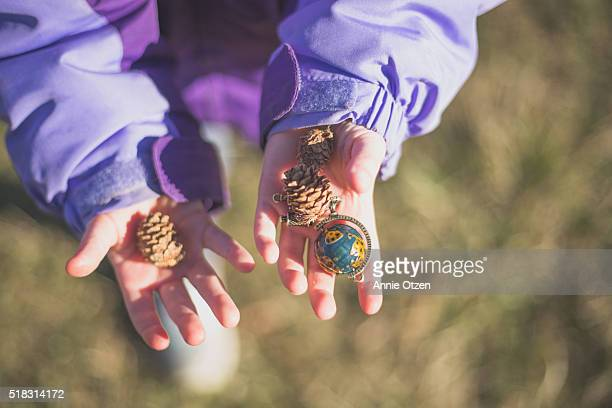 Child's hands Holding treasures
