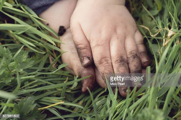 Child's hands in earth