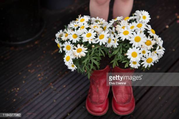 child's legs behind a pair of old red repurposed boots with flowering plants growing out of them - jardin fleuri photos et images de collection