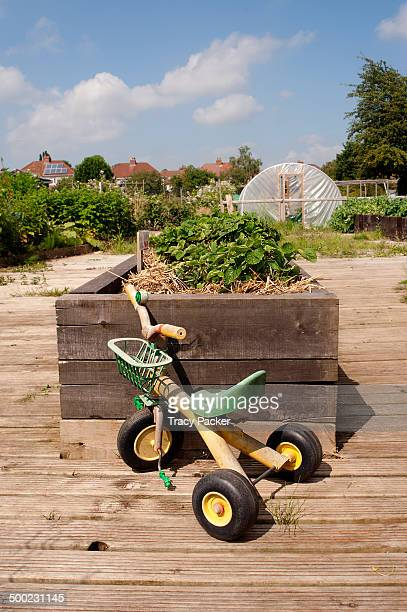 A child's tricycle stands in front of a raised strawberry bed in the Accessible Allotment of the Golden Hill Community Garden in the city of Bristol