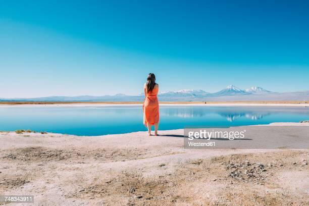 Chile, Atacama Desert, back view of woman standing on edge of Laguna Cejar
