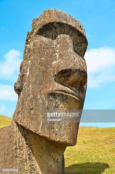 Chile, Easter Island, Moai stone head in Rano Raraku quarry, Rapa Nui National Park