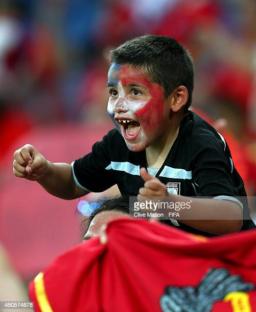 Chile fan cheers prior to the 2014 FIFA World Cup Brazil Group B match between Chile and Australia at Arena Pantanal on June 13 2014 in Cuiaba Brazil