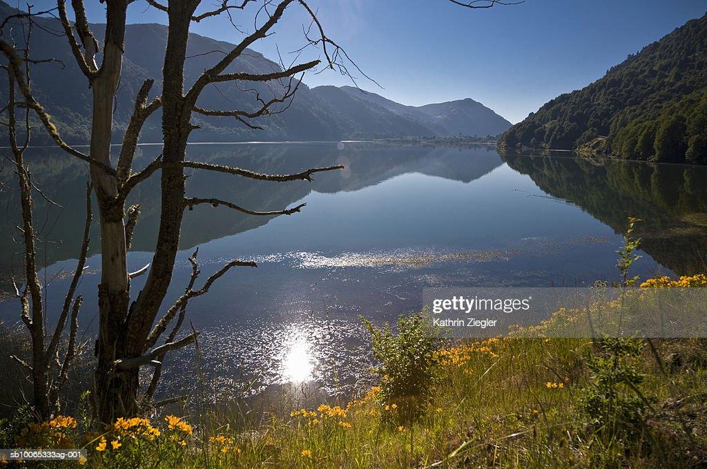 Chile, Patagonia, Lago Villarica : Foto stock