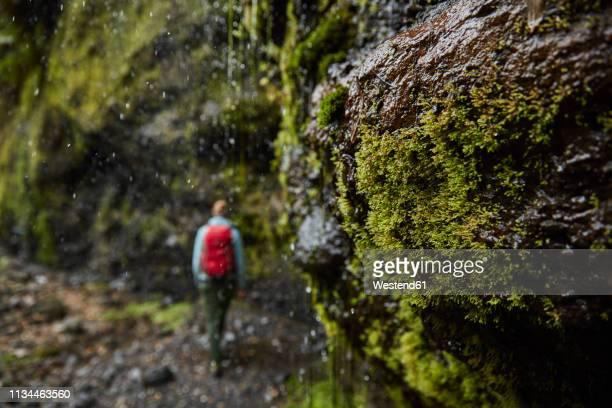 Chile, Patagonia, Osorno Volcano, woman hiking at Las Cascadas waterfall