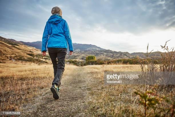 chile, valle chacabuco, parque nacional patagonia, woman on a hiking trip in steppe landscape - andar imagens e fotografias de stock