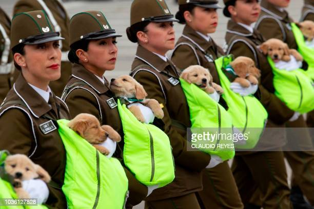 TOPSHOT Chilean female police officers march with puppies future police dogs during the celebration parade of Chile's 208th Independence anniversary...