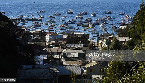 Chilean fishing boats lie at anchor in 'Caleta Tumbes' cove Concepcion some 519 km south of Santiago on July 1 2009 Chile's 4300 km long coastline is...