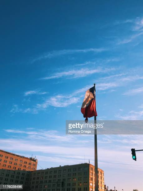 chilean flag - bandiera del cile foto e immagini stock