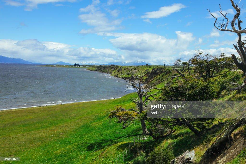 Chilean Patagonia (Chile), Rio Verde ('Green River'), coastline.