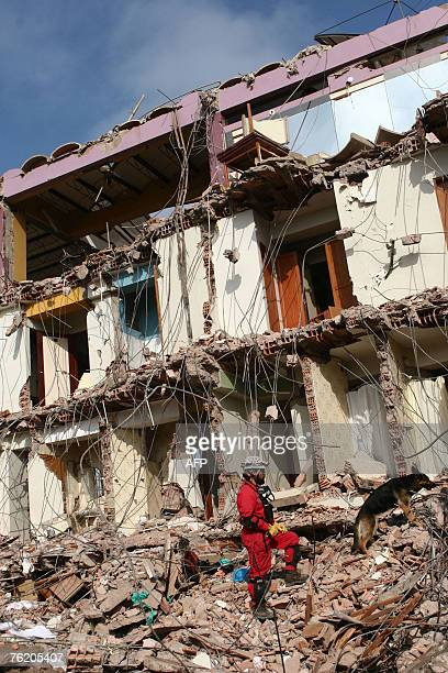 Chilean rescuer works with a sniffer dog in the debris of a building in Pisco, Peru, 250 kms south of Lima, 21 August 2007. The Red Cross on Tuesday...