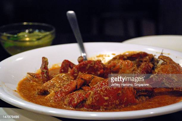 chili crab - chilli crab stock photos and pictures