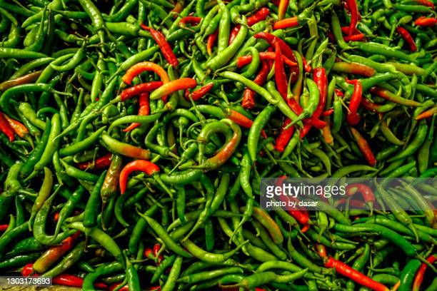 chili pepper - green chili pepper stock pictures, royalty-free photos & images