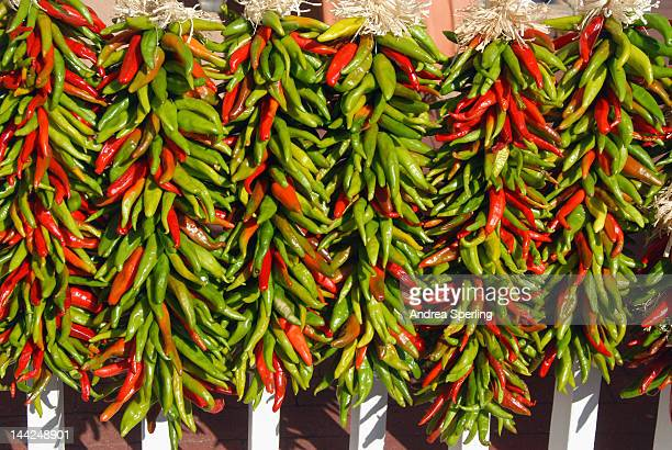 chili peppers - green chili pepper stock pictures, royalty-free photos & images