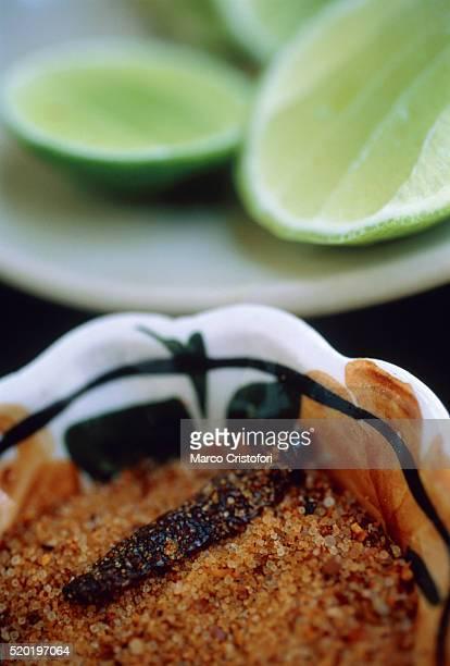 chili, salt, worm and lime for tequila mezcal - marco cristofori fotografías e imágenes de stock