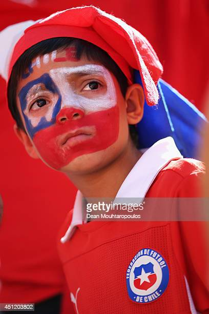 Chille fan shows their colours during the 2014 FIFA World Cup Brazil Group B match between the Netherlands and Chile at Arena de Sao Paulo on June 23...
