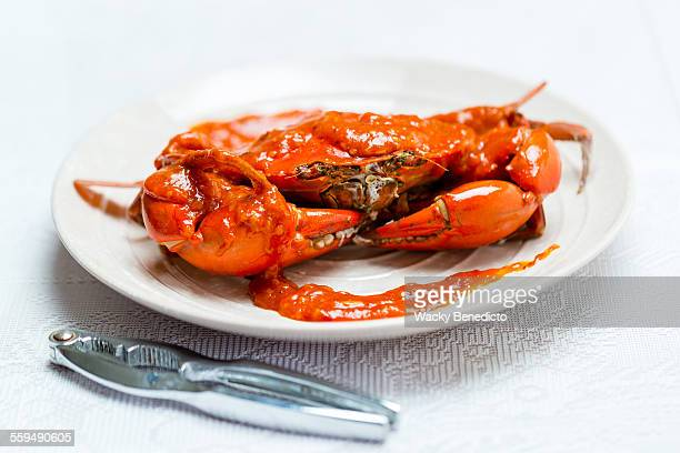 chilli crab - crab stock photos and pictures