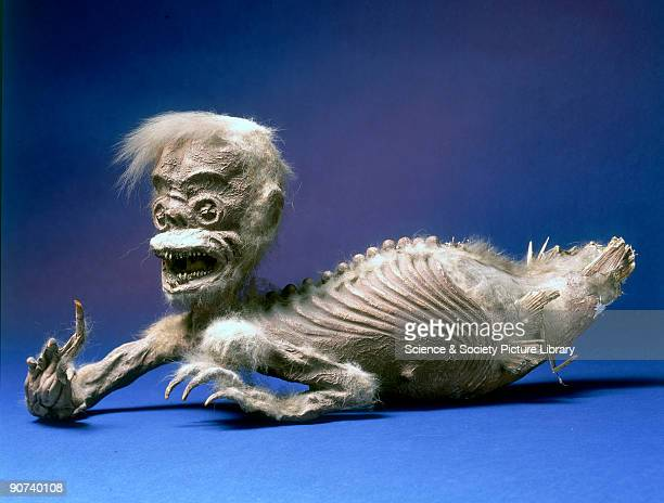 A chimera probably composed of monkey and fish elements and likely to have been made as a representation of Loro Kidul It was used in rituals...