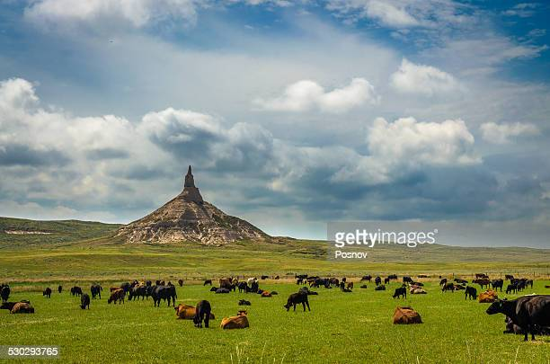 chimney rock nhs - the oregon trail stock photos and pictures