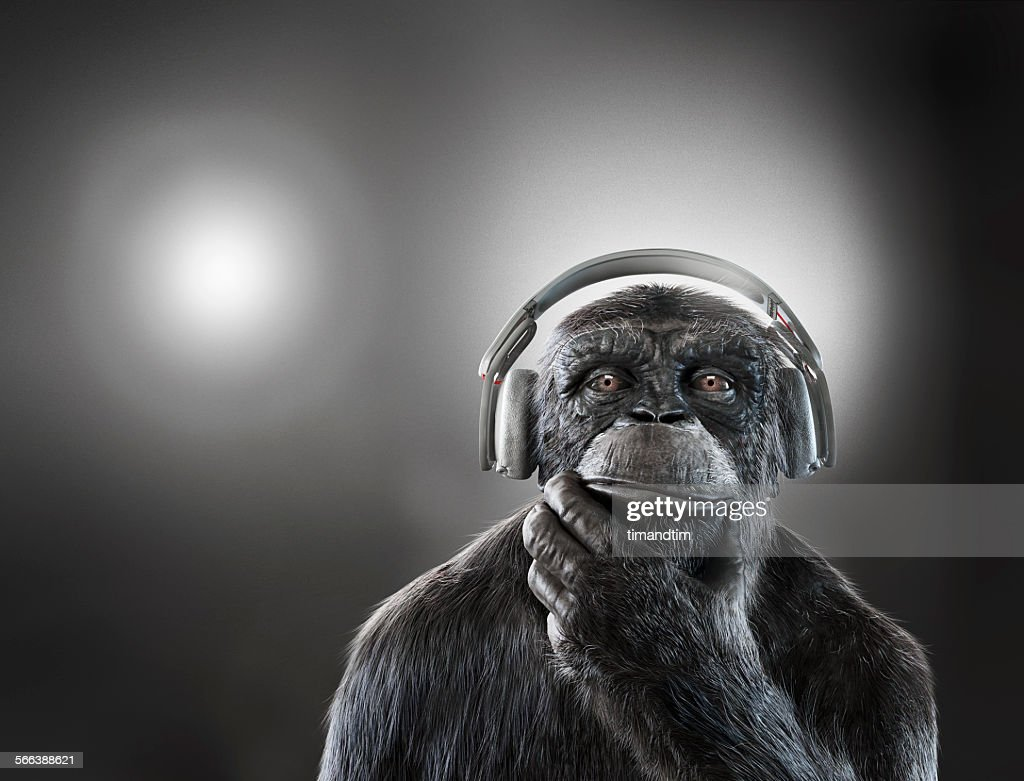 Chimpanzee with headphones : Stock Photo