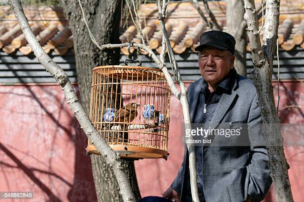 China Beijing Beijing men with their birds in cages are meeting in the Coal Hill Park