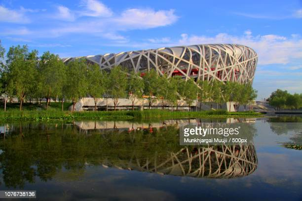 china beijing national stadium bird's nest - stadio olimpico nazionale foto e immagini stock