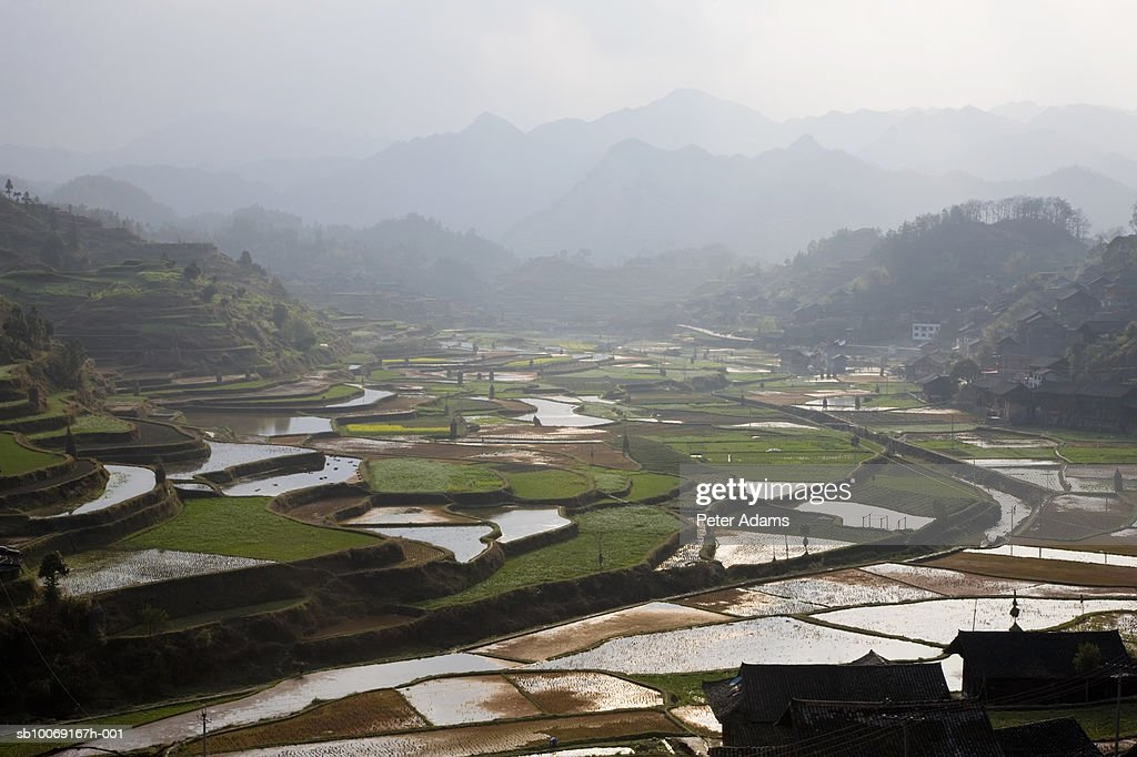 China, Eastern Guizhou; Kaili; Rice field : Stockfoto
