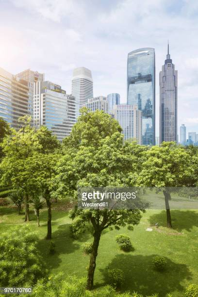 china, guangzhou, cityscape and city park - guangdong province stock photos and pictures