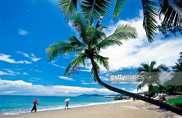 china, hainan island, beachfront near sanya. - hainan island stock pictures, royalty-free photos & images