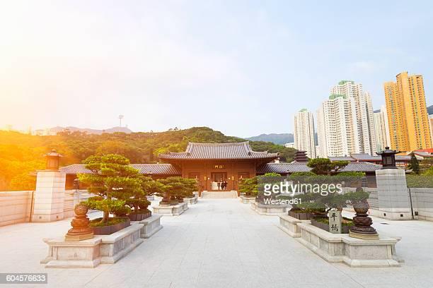china, hong kong, chi lin nunnery - nonnenkloster stock-fotos und bilder