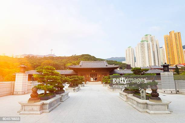 china, hong kong, chi lin nunnery - convent stock photos and pictures