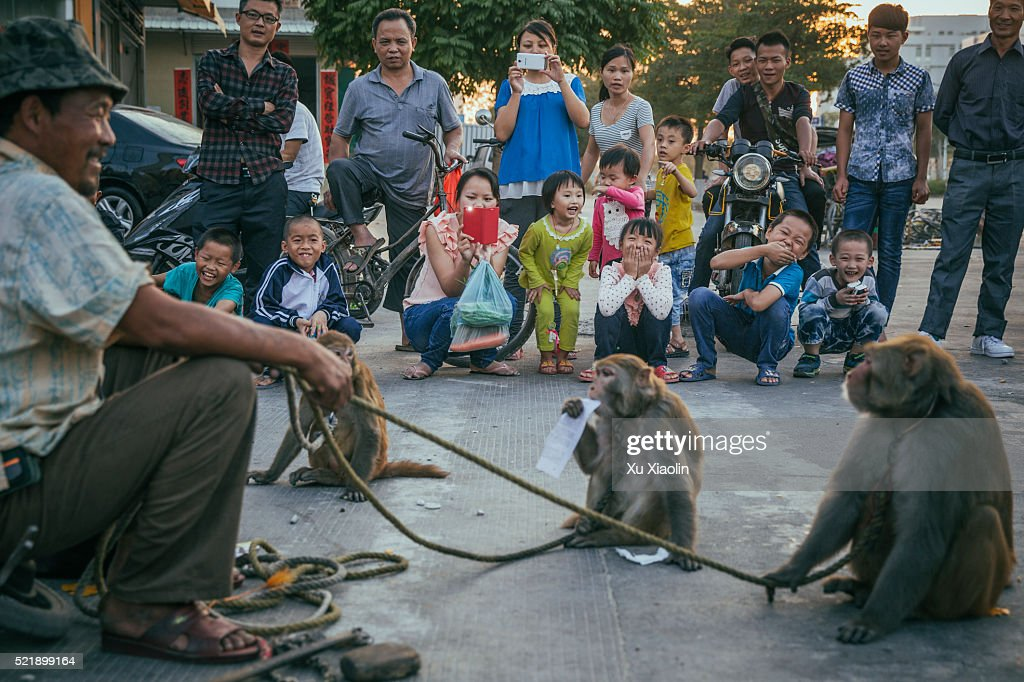 China Monkey trainer : Stock Photo
