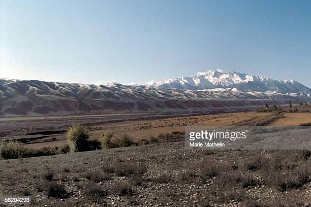 China Pasture of Xinjiang on the road of Nanshan October 1981