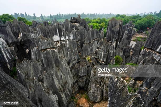 china, shilin, stone forest - provinz yunnan stock-fotos und bilder