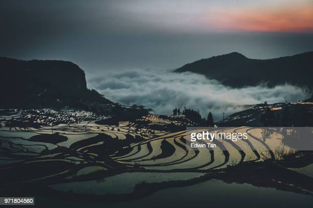 china yuan yang padi rice terraces early in the morning with reflection of sunlight from the water and cloud - yuanyang stock pictures, royalty-free photos & images