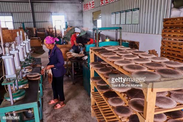 china, yunnan, xishuangbanna district, pu'er tea, pu'er tea factory, one of the best chinese tea - provinz yunnan stock-fotos und bilder