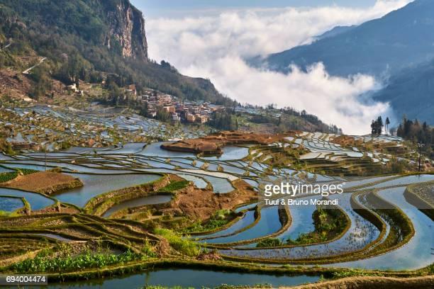 China, Yunnan, Yuanyang, terraced paddy-fields