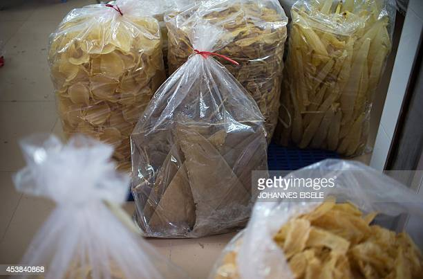 ChinaenvironmentsocialfoodeconomyFOCUS by Felicia SONMEZ This photo taken on August 9 2014 shows a sack of dried shark fins at a shop in Shantou in...