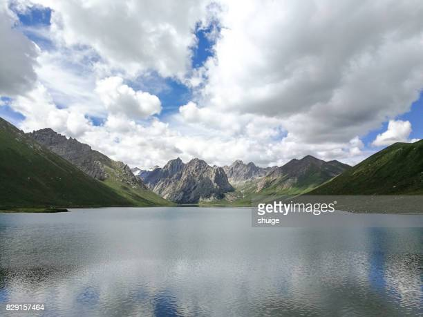 china's qinghai province annual baoyu natural scenery - qinghai province stock photos and pictures