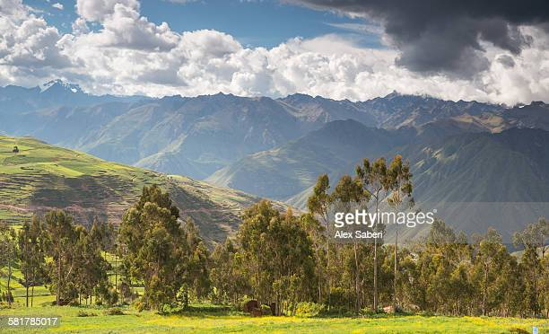 chinchero , urubamba province , peru - alex saberi photos et images de collection