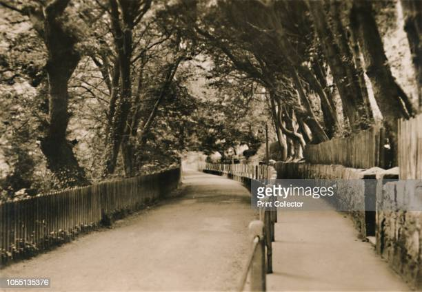 Chine Avenue Shanklin IW' circa 1920 One of a set of 12 souvenir views of Shanklin in the Isle of Wight from the Sunshine Series of '3 1/4 x 2 1/4...