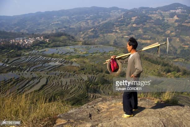Chine, province du Yunnan, ethnie des Hani, Yuanyang, village de Malizai, rizieres en terrasses, un paysan va au travail. China, Yunnan province,...