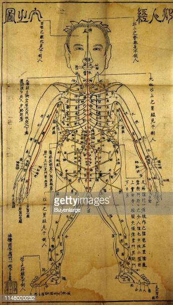 Chinese Acupuncture Chart Printed in Japan Chinese Acupuncture Chart Printed in Japan